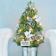 Angel of Peace Tabletop Christmas Tree - 1-Gallon