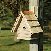Chick Birdhouse