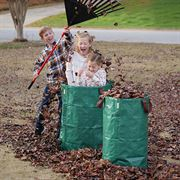 Reusable Garden & Leaf Bags image