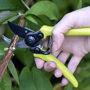 Micro Secateurs