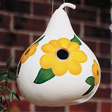 birdhouse gourd seeds from park seed
