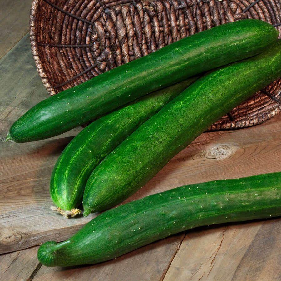 Tasty Green Hybrid Cucumber Seeds (P)Pkt of 30 seeds Image