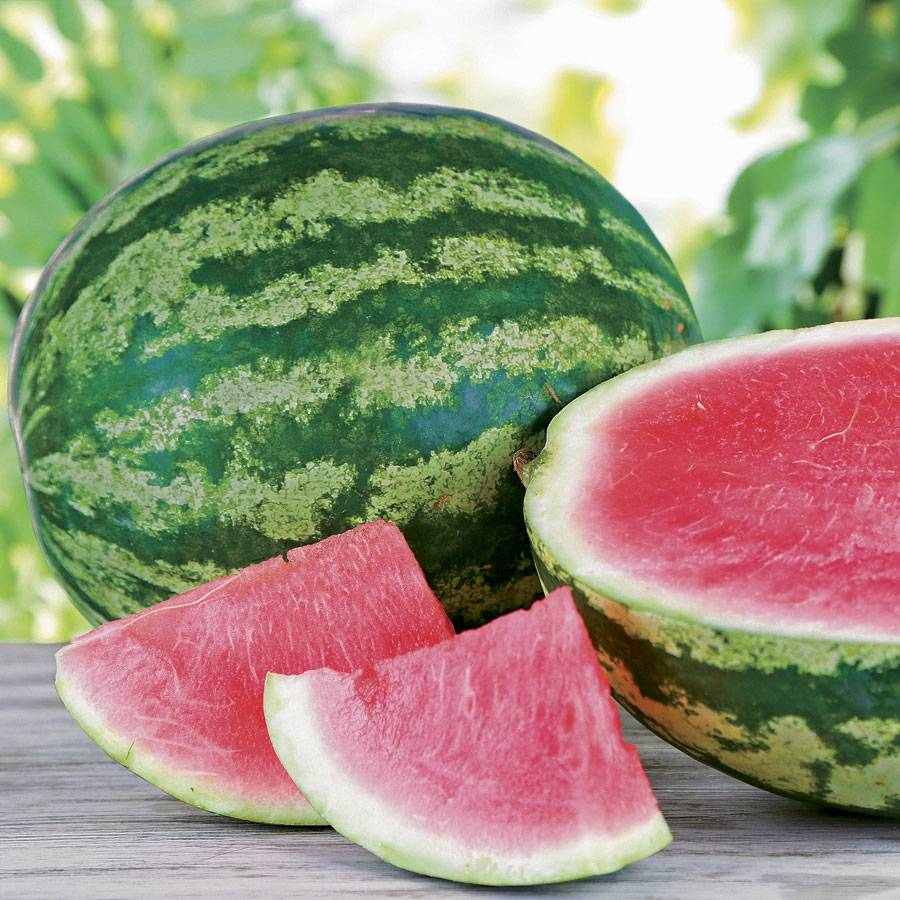Triple crown hybrid watermelon seeds for What parts of a watermelon can you eat
