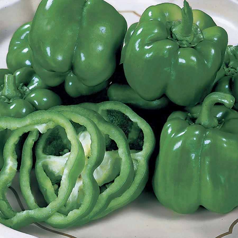 California Wonder Organic Pepper Seeds Image