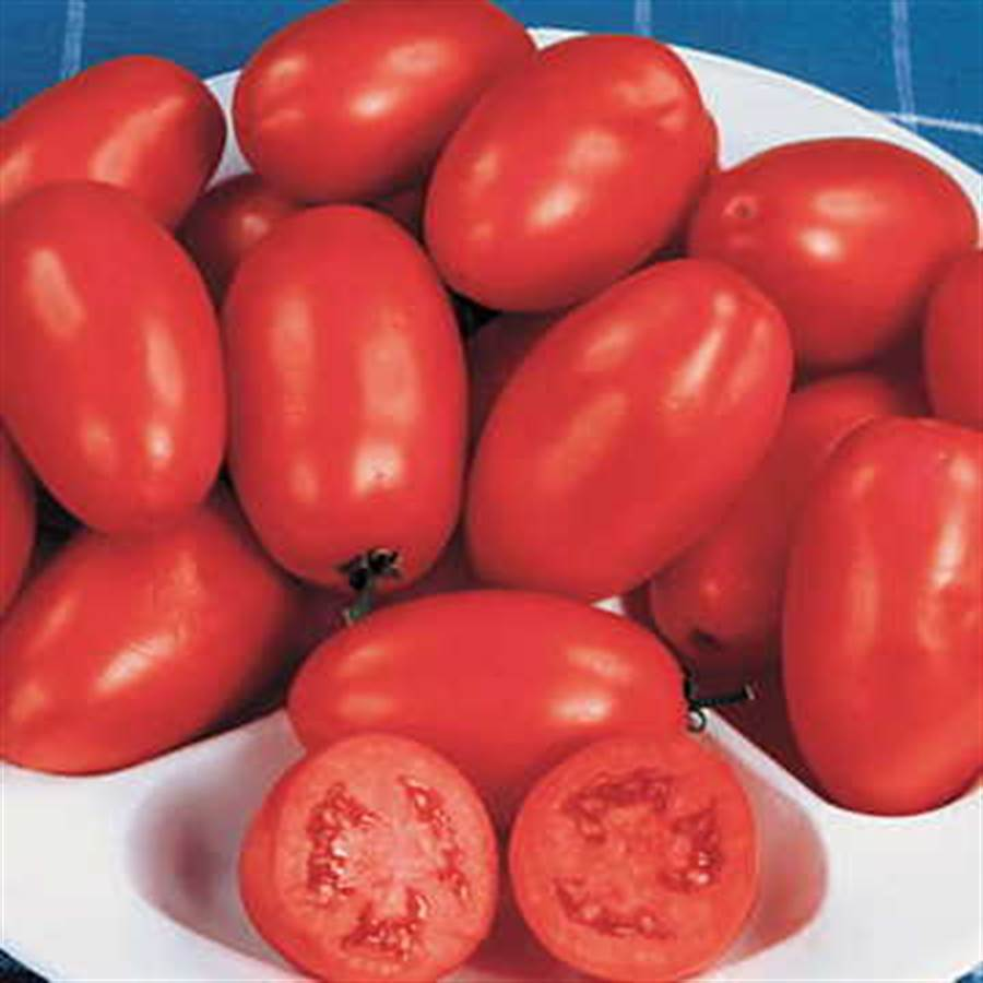 Organic Roma Tomato Seeds From Park Seed