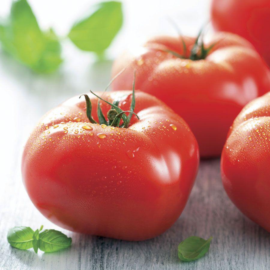 Mater Sandwich Organic Hybrid Tomato Seeds Image