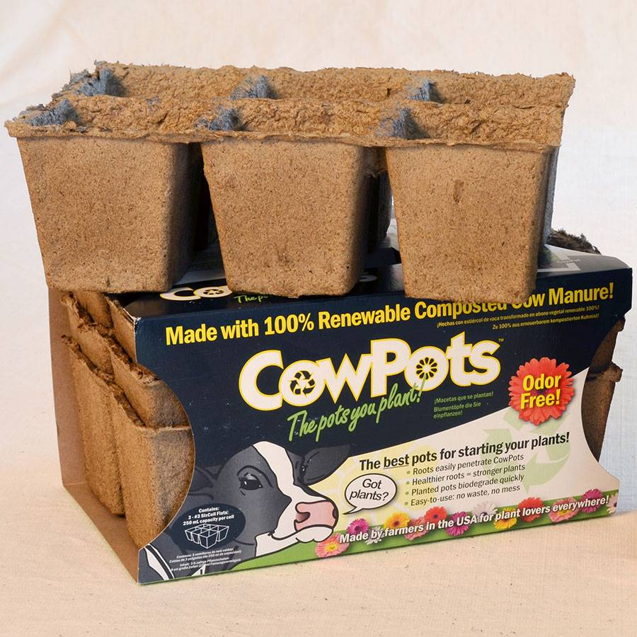 CowPots 3-inch Biodegradable - Pack of 3 (6-packs) Image