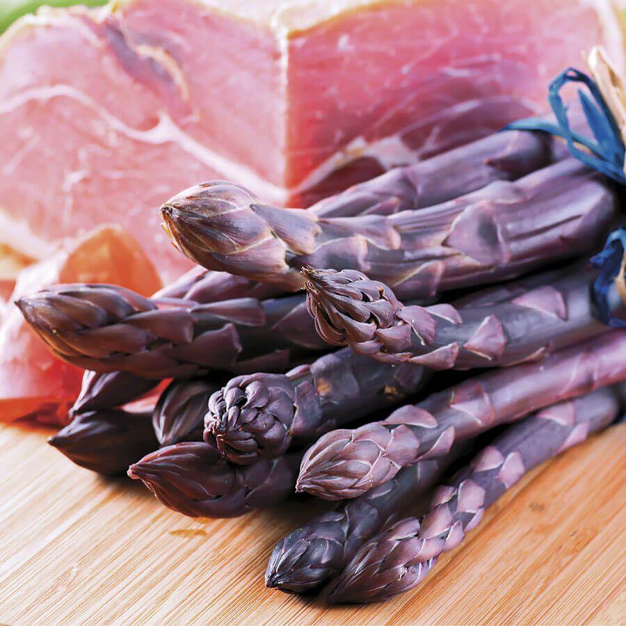 Asparagus 'Pacific Purple' Image