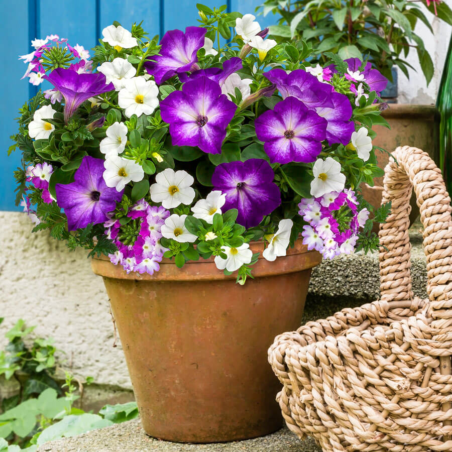 Blooming Block Kwik Kombos™ Spring Showers™ Image