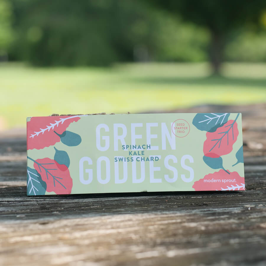 Seed Starter Trio - Green Goodness Image