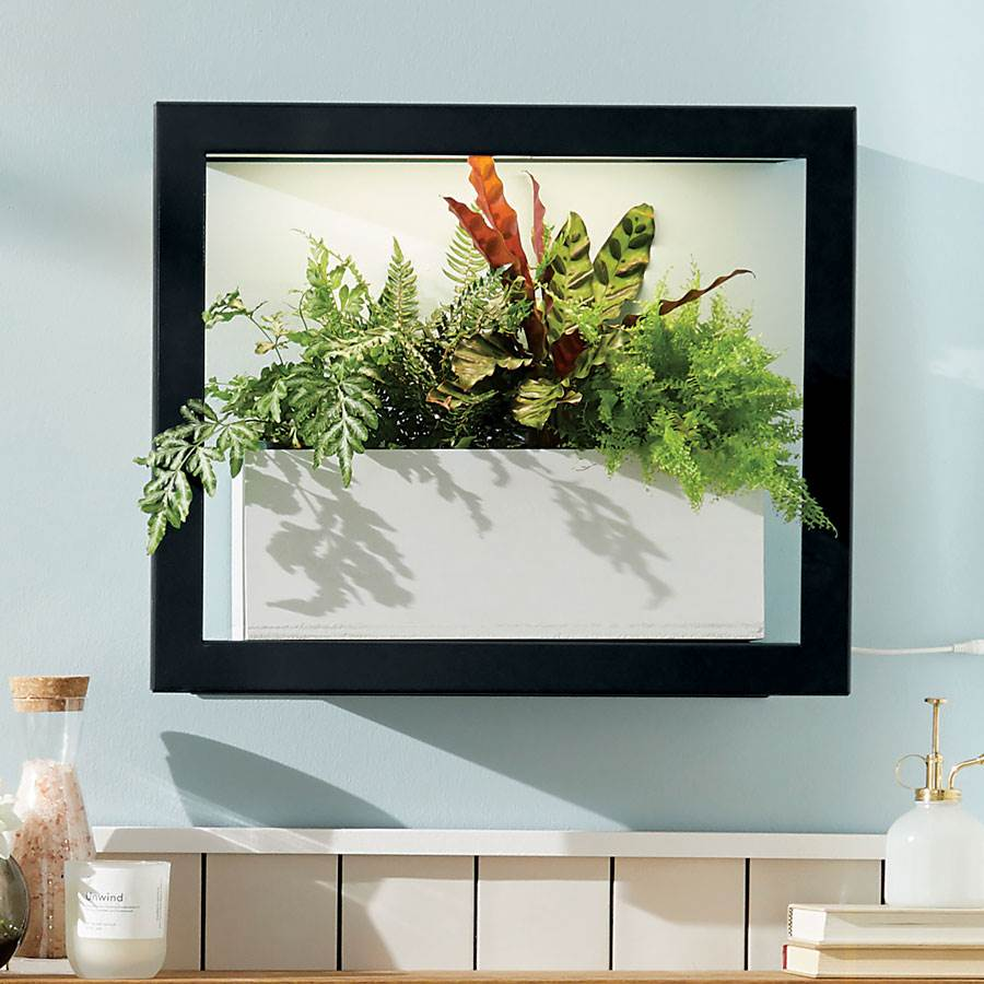 Modern Sprout Smart Growframe Image