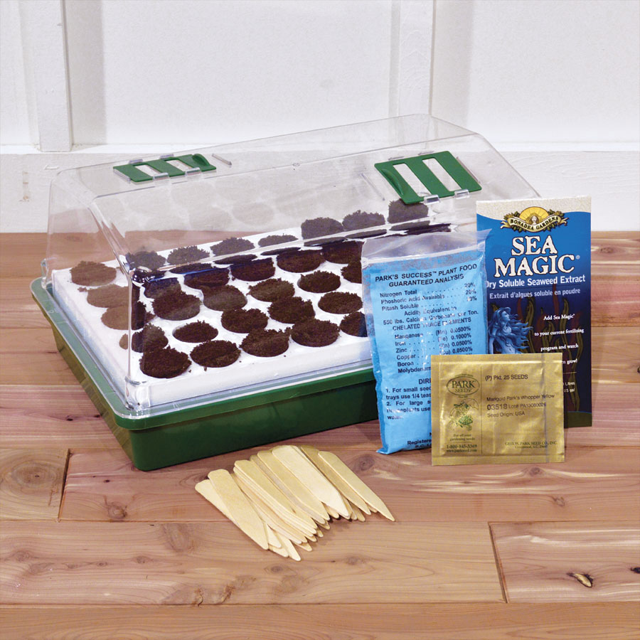 bio dome for beginners kit