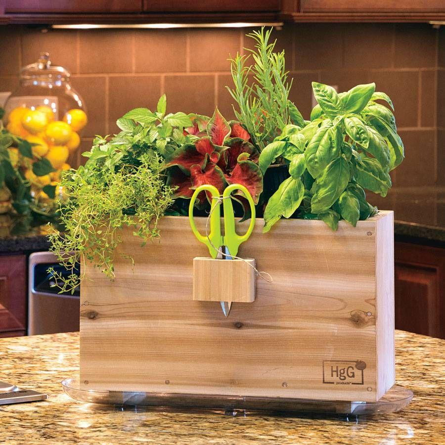 Park S Selects Harvest Window Box