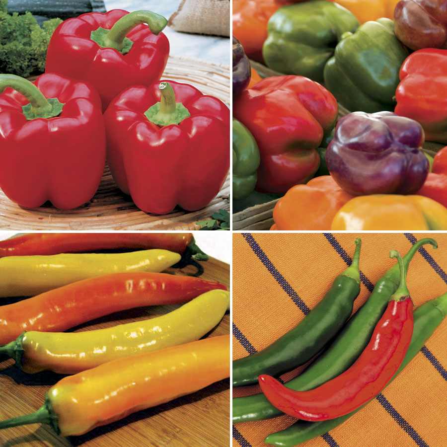 Our Best Pepper Collection Image