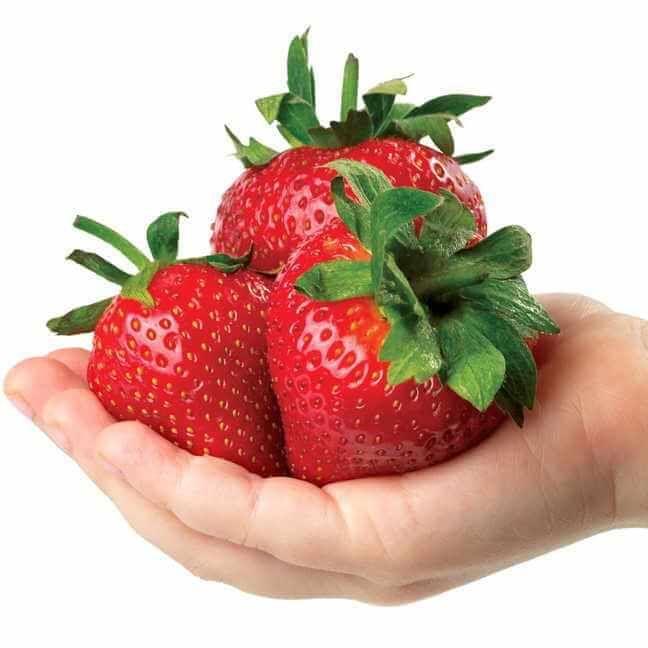 Park's Whopper Strawberry Image