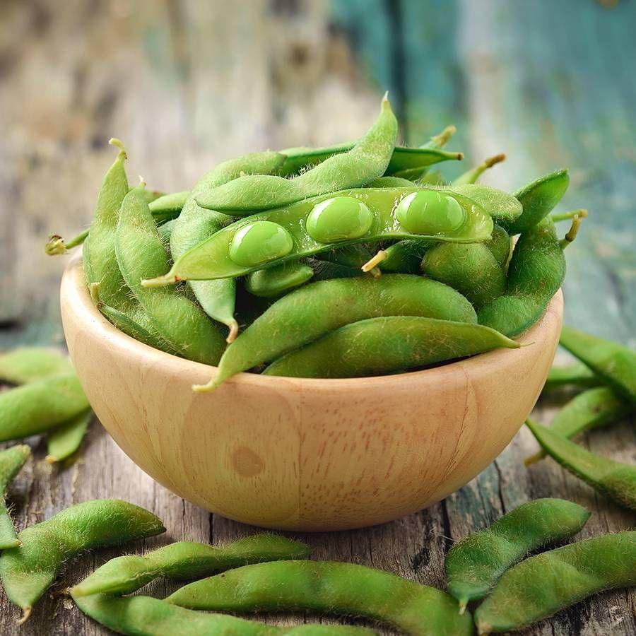Chiba Green Organic Soybean Seeds Image