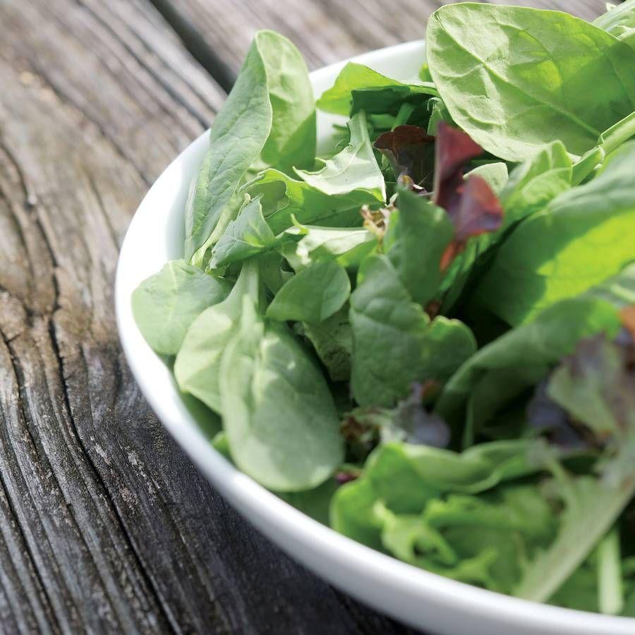 Park's Spinach Salad Blend Seeds Image