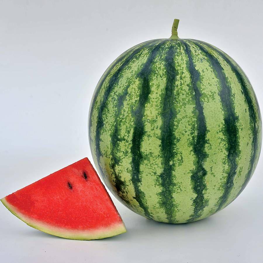 Watermelon Mambo Hybrid