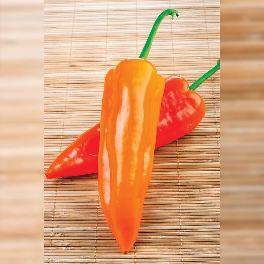 Oranos Organic Pepper Seeds Image