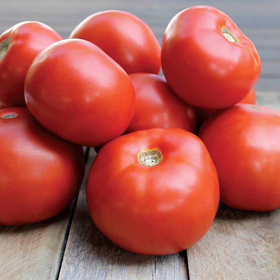 Jamestown Tomato Seeds Image