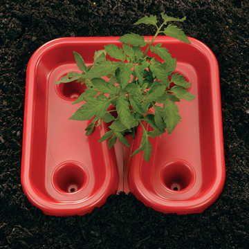 Red Tomato Automator Tray - Set of 3 Image