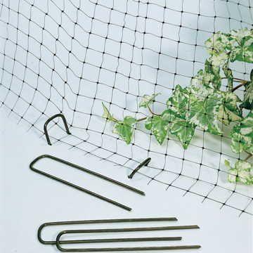 Park's Anti-Bird Net and Ground Anchors Image